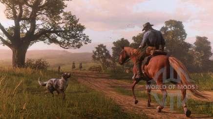 Red Dead Redemption 2: управление лошадью