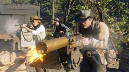 Red Dead Redemption 2: использование вида