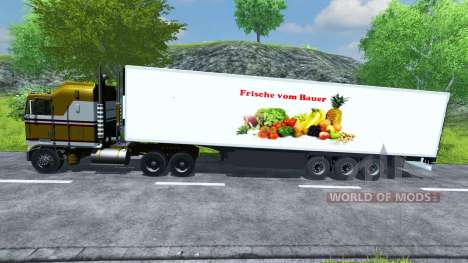 Полуприцеп-рефрижератор KRONE Koffer Cool Liner для Farming Simulator 2013