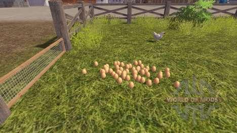 Кучность куриных яиц для Farming Simulator 2013