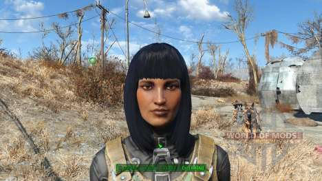 Хак на изменение внешности для Fallout 4