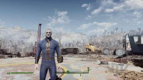 Stalker Lightning для Fallout 4