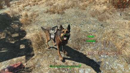 Чит на броню для собаки для Fallout 4