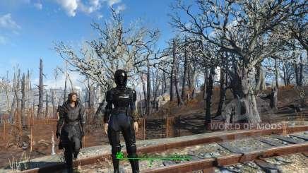 N7 Combat Armor для Fallout 4