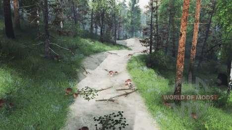 Trail Club для Spin Tires