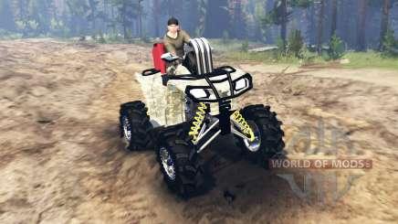 ATV Outlander для Spin Tires