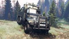 КрАЗ-255 В1 Тату