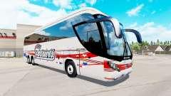 Скин Patriots на автобус Mascarello Roma 370
