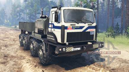 МЗКТ-74132 для Spin Tires