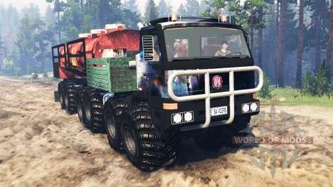 Tatra Terrno 12x12 для Spin Tires