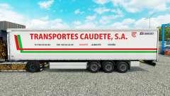 Скин Transportes Caudete S.A. шторный полуприцеп