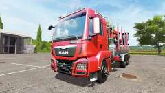 MAN TGS 33.480 forestry