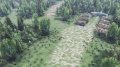Глубоко в лесу