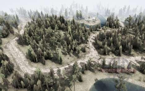 Forest Transit для Spintires MudRunner