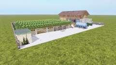 Виноградная ферма