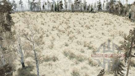 The Forest Marsh для MudRunner