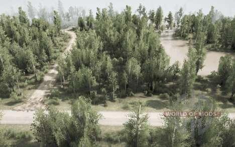 Back Woods - The Flood для Spintires MudRunner