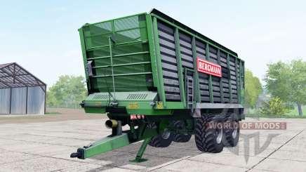 Bergmann ⱧTW 45 для Farming Simulator 2017